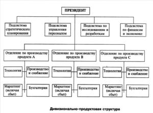 Дивизональная структура